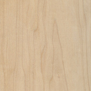 Canadian Hard Maple 300x300